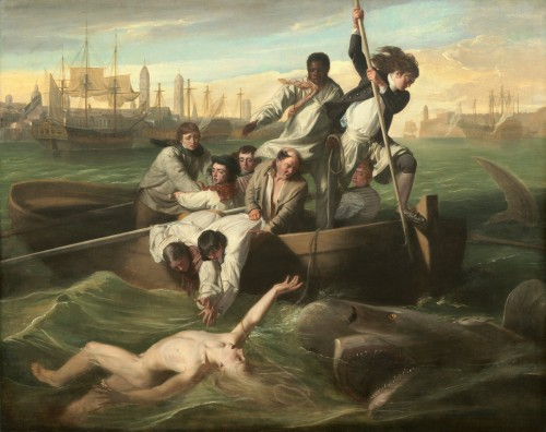 "John Singleton Copley's ""Watson and the Shark"""